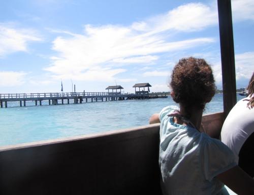 Islas Gili – Excursión y snorkeling!