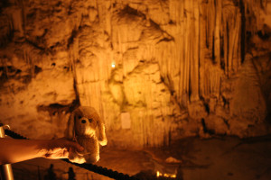 elguauguau-en-la-grotta-nettuno