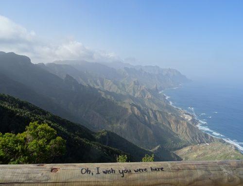 """Tenerife – Recorriendo el """"Bosque encantado"""""""