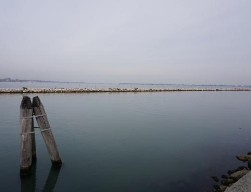 Parque natural del Delta del Po, deja fluir tu imaginación