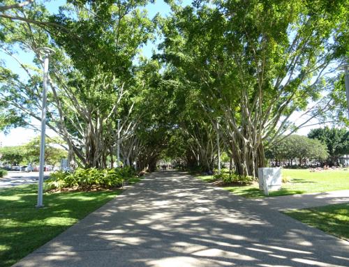 Cairns, ciudad alegre del norte de Australia